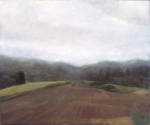 """Vermont Field during the Fog""
